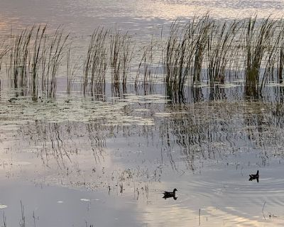 Awesome Townhome, beautiful lake. Cleaning Guidelines - Orlando