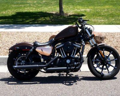 2019 Harley-Davidson XL883N SPORTSTER XL883N IRON