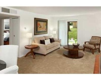 Pet-friendly one bedroom and two bedroom apartments for rent.