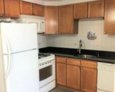 409 S Maple Ave #8, Oak Park, IL 60302 1 Bedroom House