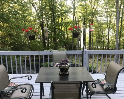 Beech Mountain Lakes - 5 BR 3BA Home with Mother-in-law Suite - Drums