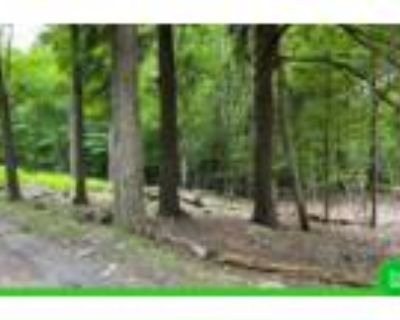 0.37 Acres for Sale in Newfoundland, PA