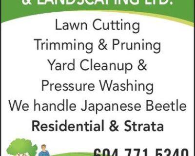 Lawn Cutting Trimming & Pruning Yard Cleanup & Pressure Washing We handle Japanese Beetle