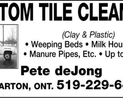 CUSTOM TILE CLEANING (Clay &...