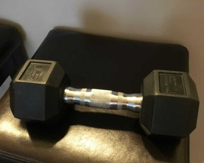 15 Pounds Hex Dumbbell Weight