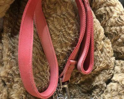 Lrg Dog Leash & Slide Collar