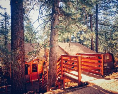 Gorgeous Treetop View + Private Spa Deck + Walk To Bear Mt, Zoo, Hiking Trails - Moonridge