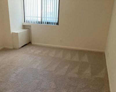 Private room with own bathroom - Arlington , VA 22202