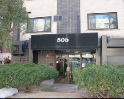 505 W Melrose St #407, Chicago, IL 60657 1 Bedroom Apartment