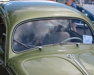 Type 1 Bug Oval Windshield Glass 1953-1957
