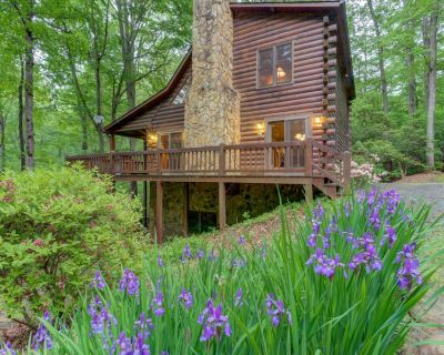 Creekside family retreat w/private hot tub, billiards table, & tree-lined views - Mineral Bluff