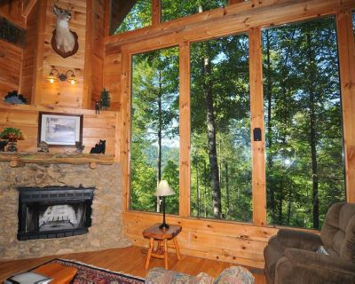 Charming cabin tucked-away in the woods, with hot tub, fireplace and pool table - Pigeon Forge