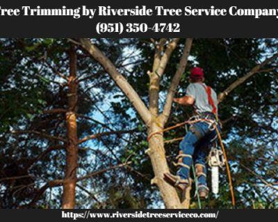 Riverside Tree Service Company