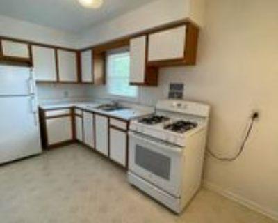 1607 Rural Street - 2 E #2E, Rockford, IL 61107 1 Bedroom Apartment