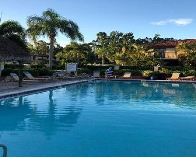 Commercial & Professional Swimming Pools Construction Company in Bonita Springs