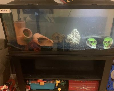 65 gallon tank and stand