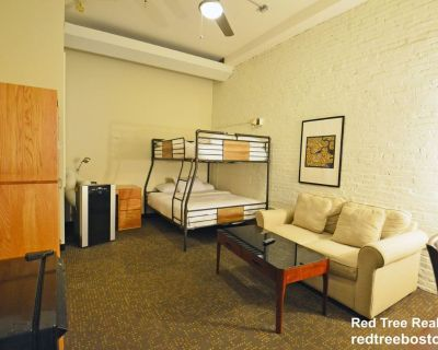 Furnished Studio Apartment For Rent. Common Kit...