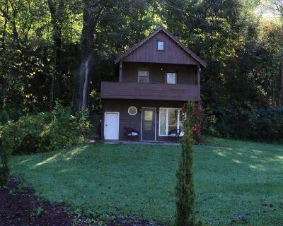 Creekside Cabin Getaway - Winona