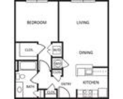 Ashton Arbors - 1 Bedroom | 1 Bath