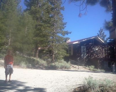 Mountain Rustic Ski House Tahoe-Reno Mt Rose-Snow Resort 1.5 Miles - Washoe County