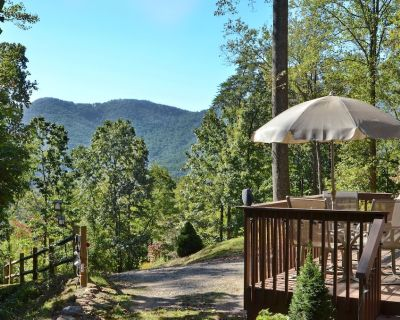 This Lovely Cottage Is Just Minutes To Down Town Asheville, Biltmore Estate - Candler