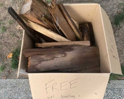 Free large box of wet kindling and wood