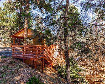 Pine View Lodge: A Lovely Dog Friendly 3 Bedroom Within Walking Distance to Midtown! - Ruidoso