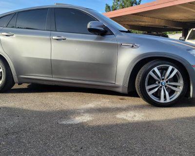 2010 BMW X6 M Standard