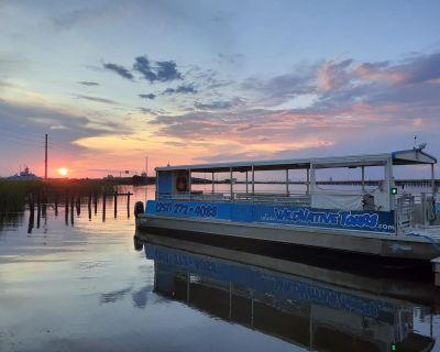 2013 Sightseer Power Catamaran