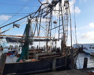 50ft shrimp boat