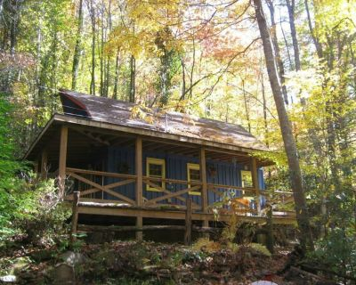 Cozy Cabin at a Great Price - Whittier