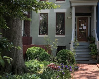 Capitol Hill beautifully furnished one bedroom apt across from Potomac Ave Metro - Eastern Market