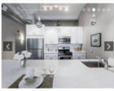 FREE RENT South Loop 1 Bed/1 Bath Luxury Loft Rooftop Gym Bike Room