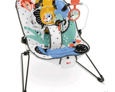 Baby bouncer > fisher Price