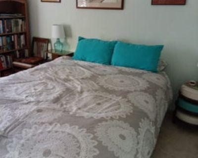 Cozy Bedroom Office Desk Chair WIFI