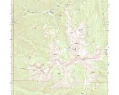 Down-sizing Sale- 100's of maps, minerals, curiosities-