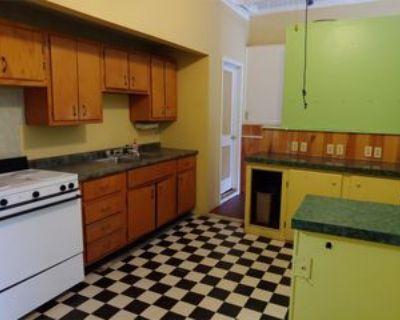 36 Water St - 1 #STOREFRONT, Seneca Falls, NY 13148 Studio Apartment