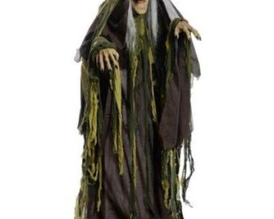 Wanted : rising swamg hag witch or any rising animated prop