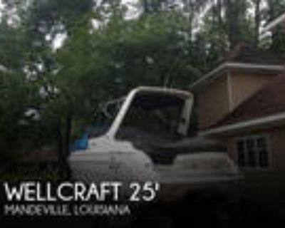 25 foot Wellcraft 25