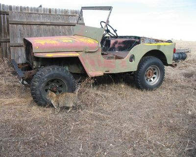 WTB Willys Jeep fender and grill