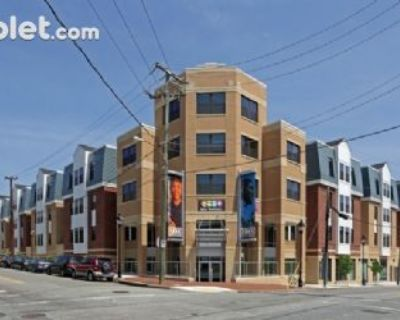 Four Bedroom In Richmond Downtown