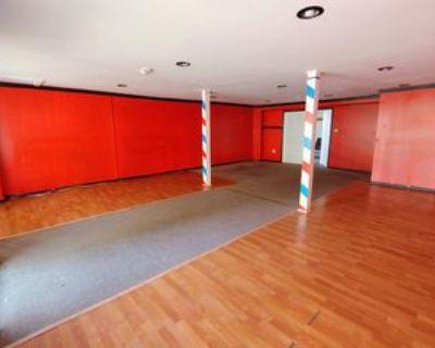 111 Pulteney St Lowr #LOWER, Geneva, NY 14456 Studio Apartment