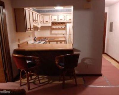 318 Washington St, Portsmouth, VA 23704 1 Bedroom Condo