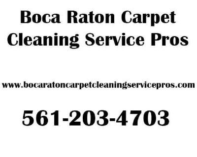 Boca Raton Carpet Cleaning Service Pros