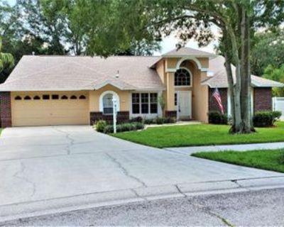 12907 Oak Shadow Pl, Tampa, FL 33624 3 Bedroom House