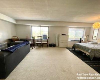 1243 Beacon Street #4, Brookline, MA 02446 2 Bedroom Apartment