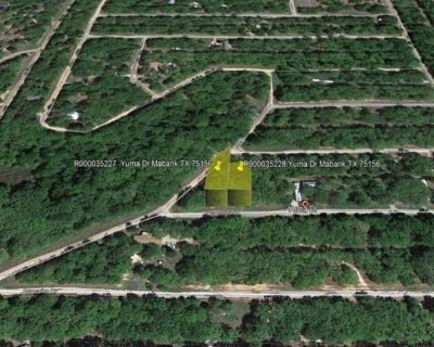 Great Investment at Great Price beside Cedar Creek Lake - Lot 325 & 326 Yuma Dr Mabank TX 75156