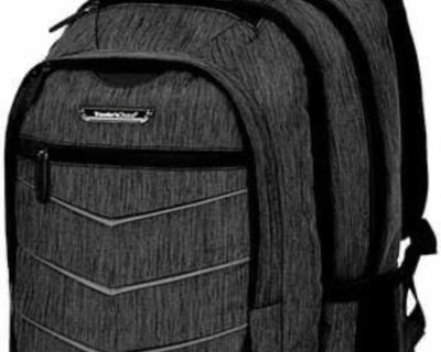 Traveler's Choice Silverwood Backpack, Gray, 19-Inch
