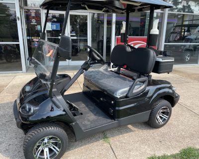 2021 Icon EV i20 Golf carts Richmond, VA