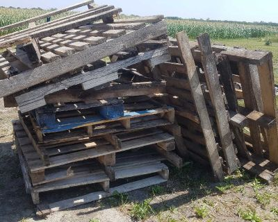 FREE Broken old pallets and wood